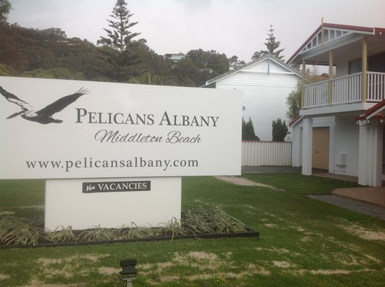 Pelicans Albany : Sign