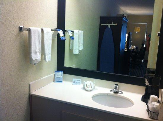 Baymont by Wyndham Nashville Airport/ Briley: Sink Area