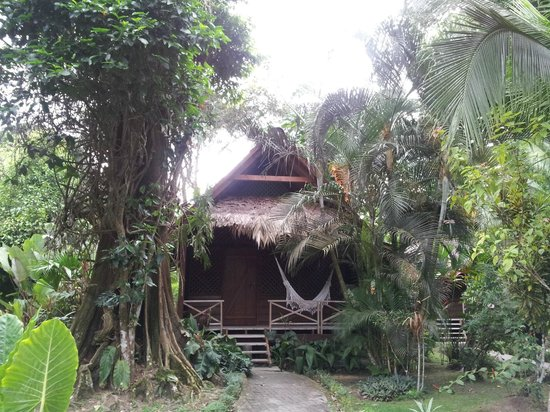 Azania Bungalows: Vista desde el jardín de entrada al bungalow.
