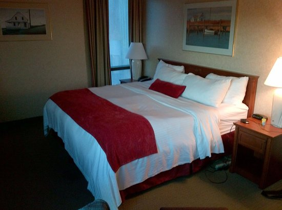 Delta St. John's Hotel and Conference Centre: Guest Room