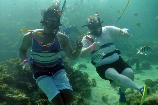 Ocean Adventures Bavaro Splash : SNUBA diving in small groups