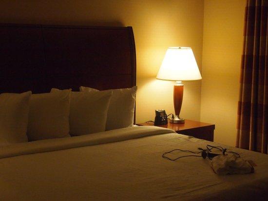 Hilton Garden Inn Omaha West : Bedroom