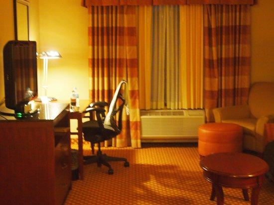 Hilton Garden Inn West Omaha: Living Room