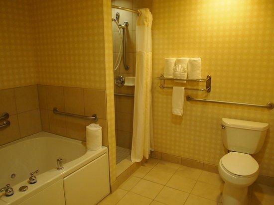 Hilton Garden Inn Omaha West: Bath