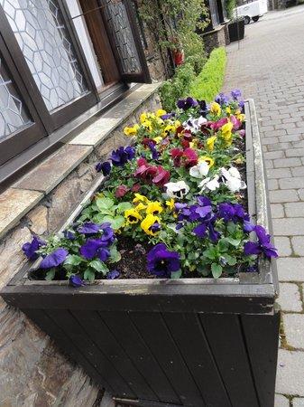 Heartland Hotel Cotswold : Pretty flowerbed