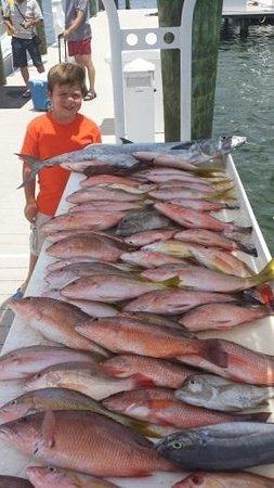 Samana Expert Fishing Charters: Snapper galore