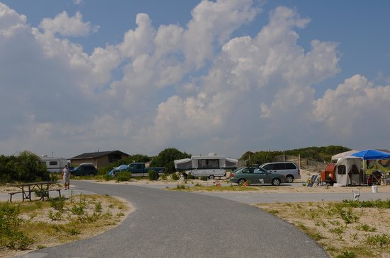 Assateague State Park Camping: Loop E