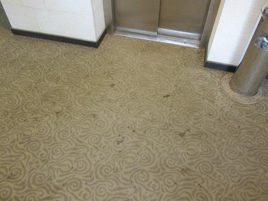 Alara Kum: verdreckter Teppich in Eingangsbereich,Nebengebäude