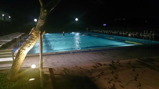 Paradise Hotel Busan: ホテル内のプールです。