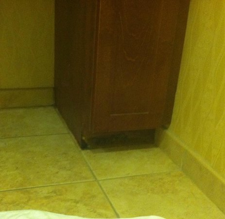 Homewood Suites St. Louis-Riverport: rotted wood on bathroom cabinet