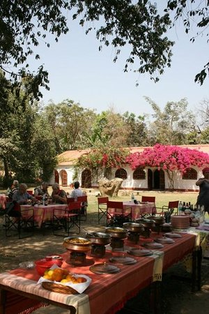 Chambal Safari Lodge: Al fresco Lunch