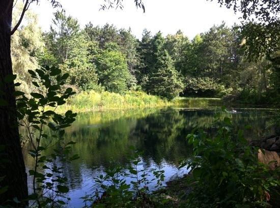 Robert W. Monk Public Gardens: Pond at Monk Gardens