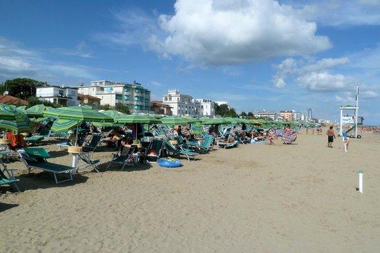 Hotel Toledo: Ein breiter Strandstreifen ohne Ligen usw.
