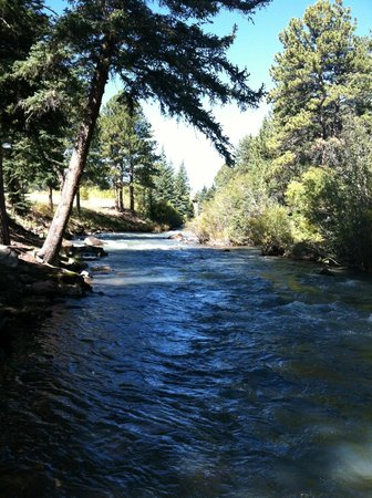 North Fork Ranch: The beautiful river full of HUGE fish!