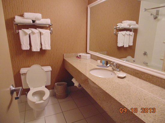 Crowne Plaza MSP Airport - Mall of America: Nice size bathroom