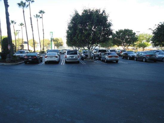 Holiday Inn Torrance: parkeerplaats