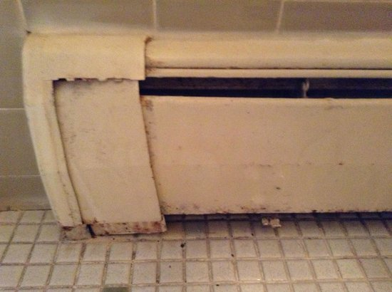 Alpengruss Cafe & Motel: Bathroom Radiator