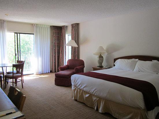 DoubleTree by Hilton Durango: Spacious Room