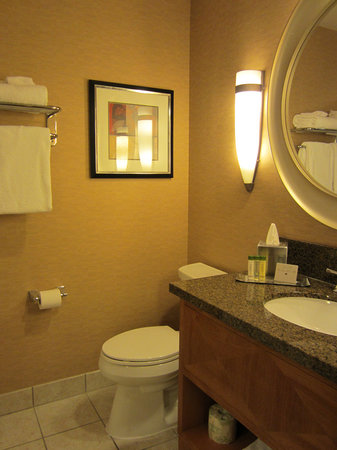 DoubleTree by Hilton Durango: Bathroom