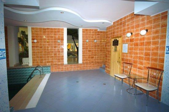 Hotel Kamena: sauna