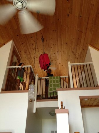 Grandview Mountain Cottages: Kids loved the farm pulley system to bring things up to the loft