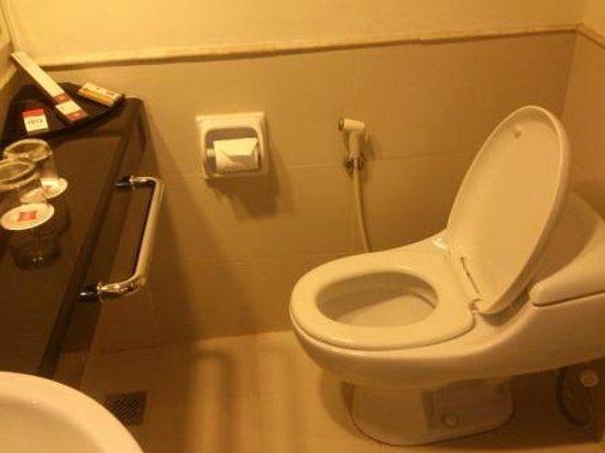 Hotel Ibis Pekanbaru : Clean toilet