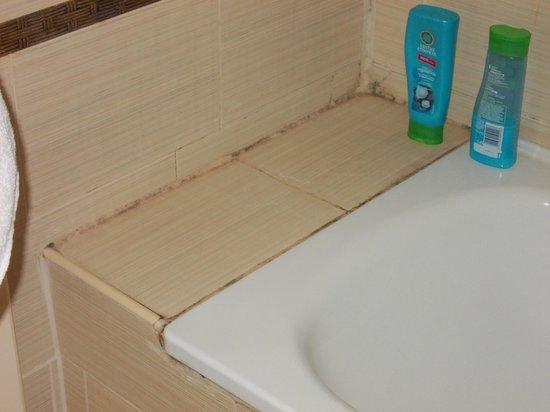Victoria Palace Hotel & Spa: Mold on the bath