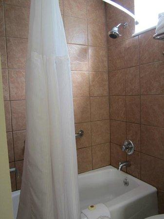 Twin Peaks Lodge & Hot Springs : Bathroom