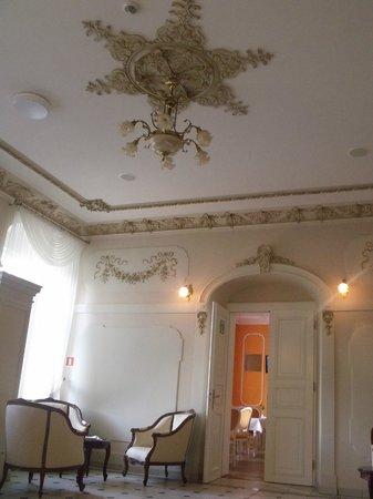 Kotulinski Palace Hotel : plafon