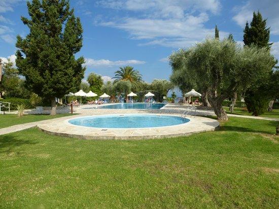 Delfinia Hotel : Zwembad met een deeltje tuinzicht