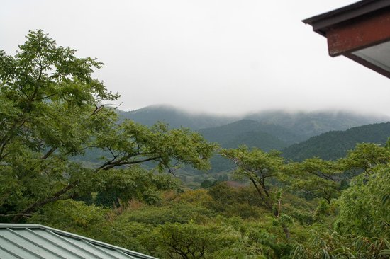 View from our room at Fuji-Hakone guest house