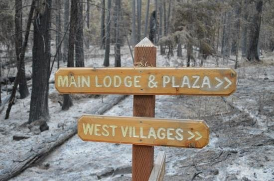 Evergreen Lodge at Yosemite: fire came close to periphery