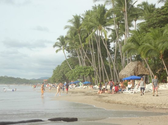 Tamarindo Beach: Very crowded on the weekend