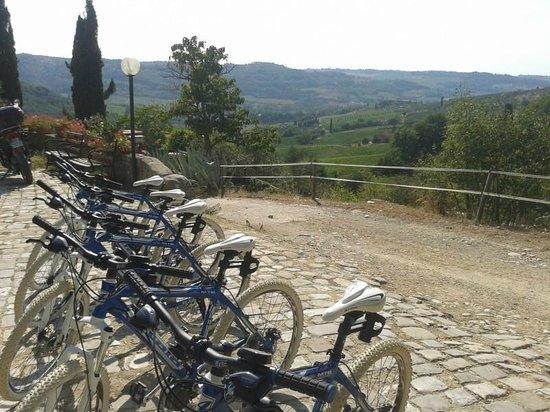 Io Svolto - Day Tours & Bike Rentals: mountain bike ELETTRICHE pronte al via!