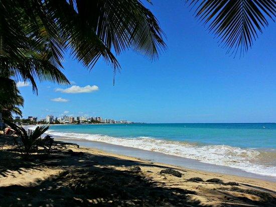 Tres Palmas Inn: Beach across and down the street