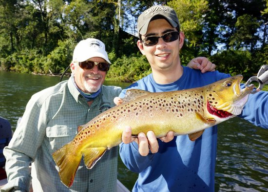 Riverside Retreat On The White River : Brown Trout
