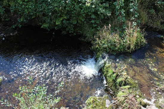 THE OLD SMITH: Rippling water of the burn