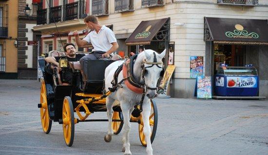 Bellavista : Tour de ville en calèche