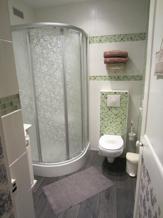 Logis Les Remparts -  Bed and Breakfast: Shower