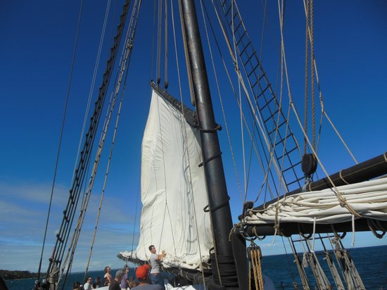 The Black Dog Tall Ships: sail coming down