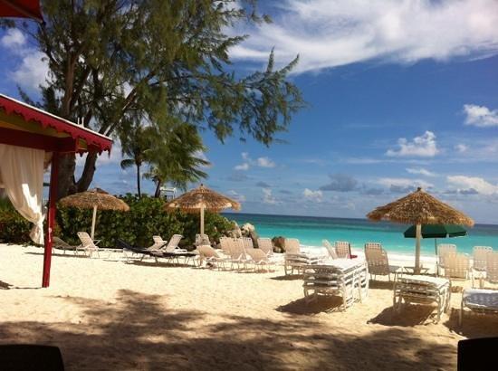 Bougainvillea Barbados: crowded beach !!
