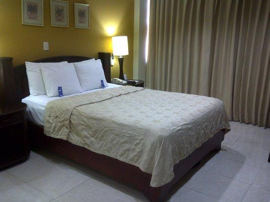 Hodelpa Centro Plaza Hotel: Room view