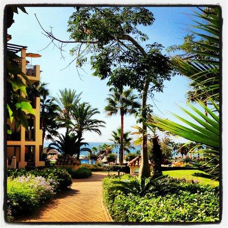 Marriott's Marbella Beach Resort: marriott 2
