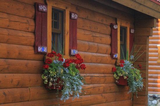Baker Creek Mountain Resort: Cabin Windowboxes at Baker Creek Sept 2013