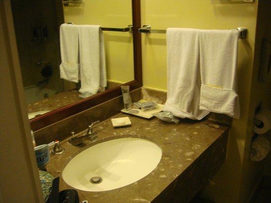 Barcelo Guatemala City: Bathroom