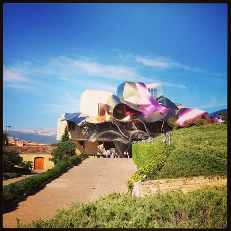 Bodegas Marques de Riscal: view from the vineyards