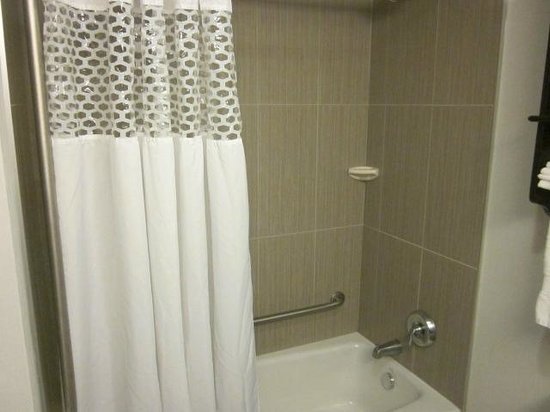 Hampton Inn by Hilton Winnipeg Airport/Polo Park: shower