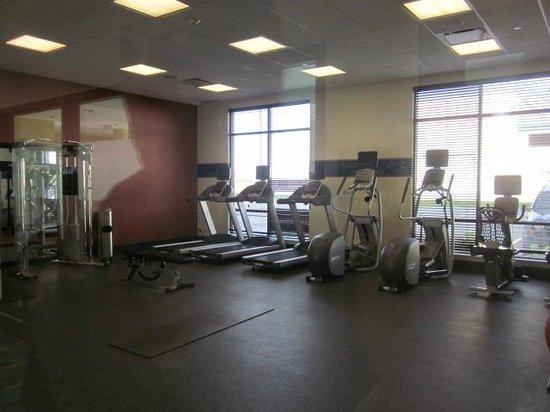 Hampton Inn by Hilton Winnipeg Airport/Polo Park : Fitness room