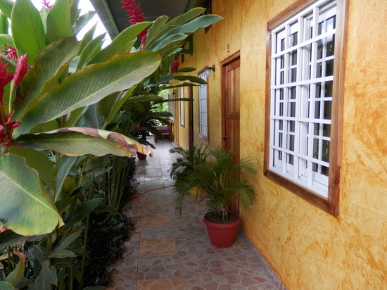 El Caballo Verde Hotel & Restaurante : The walkway in front of our guest rooms.