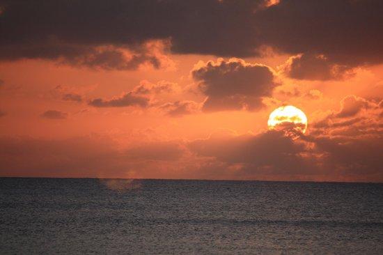 Plantana Condominiums: Sunset on the beach